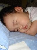 亭又寶貝1歲4個月:1768800546.jpg