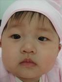娘家母親節:內湖全家福海鮮餐廳:1228492532.jpg