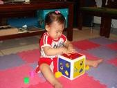 亭又寶貝1歲4個月:1768800647.jpg