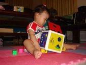 亭又寶貝1歲4個月:1768800648.jpg