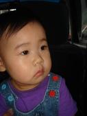 亭又寶貝1歲5個月:1756748748.jpg