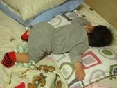 亭又寶貝1歲2個月:1197927648.jpg