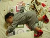 亭又寶貝1歲2個月:1197927649.jpg
