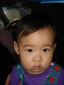 亭又寶貝1歲5個月:1756748749.jpg