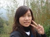 綠光森林:1068722761.jpg