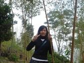 綠光森林:1068722762.jpg