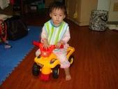 亭又寶貝1歲4個月:1768800603.jpg