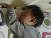 亭又寶貝1歲2個月:1197927651.jpg