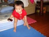 亭又寶貝1歲4個月:1768800579.jpg