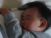 亭又寶貝1歲2個月:1197927652.jpg