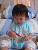 亭又寶貝1歲6個月:1216522772.jpg