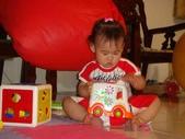 亭又寶貝1歲4個月:1768800659.jpg