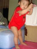 亭又寶貝1歲4個月:1768800583.jpg