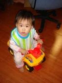亭又寶貝1歲4個月:1768800609.jpg