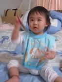 亭又寶貝1歲6個月:1216522775.jpg