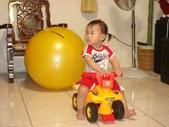 亭又寶貝1歲4個月:1768800662.jpg