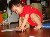 亭又寶貝1歲4個月:1768800588.jpg