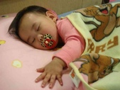 亭又寶貝1歲1個月:1294987101.jpg