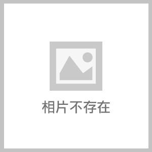 SV650X (27).jpg - ((( 林店長 ))) SUZUKI SV650X ABS 購車送 SPRS內建護具復古皮衣