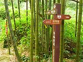 146-奮起湖.奮瑞古道-96.12.23:PICT0513.JPG
