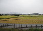 99.9.15日光明智平,中禪寺湖:東武電車內IMG_2834.JPG