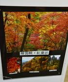 北海道(道東,道央):DSC_0914.JPG