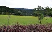 龍潭湖:DSC_2833.JPG