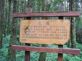 明池國家森林遊樂區:明池國家森林遊樂區 046.jpg