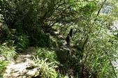 武界-摩摩納爾瀑布:DSC_9375.JPG