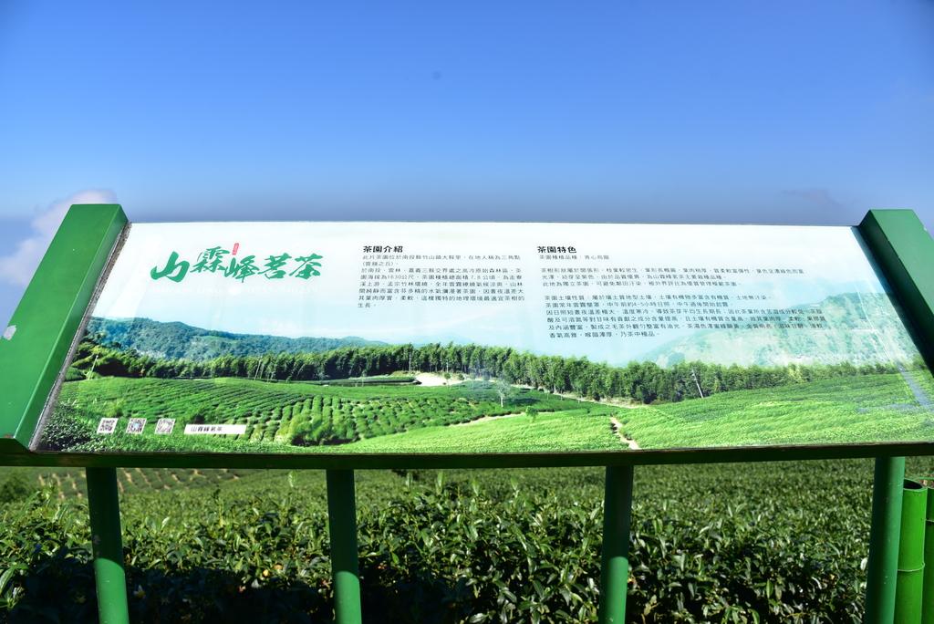草嶺石壁風景區:雲嶺之丘 (8).JPG