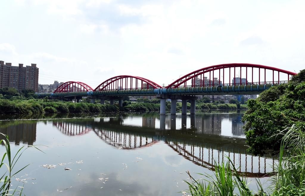 淡水河,新店溪右岸自行車道:DSC_3606.JPG