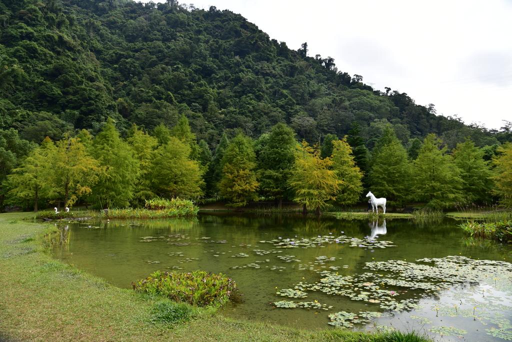 DSC_0387.JPG - 南庄雲水度假森林