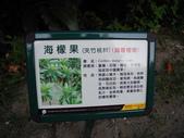 100年7月26日金山之旅:金山-獅頭山公園-海檬果036.jpg