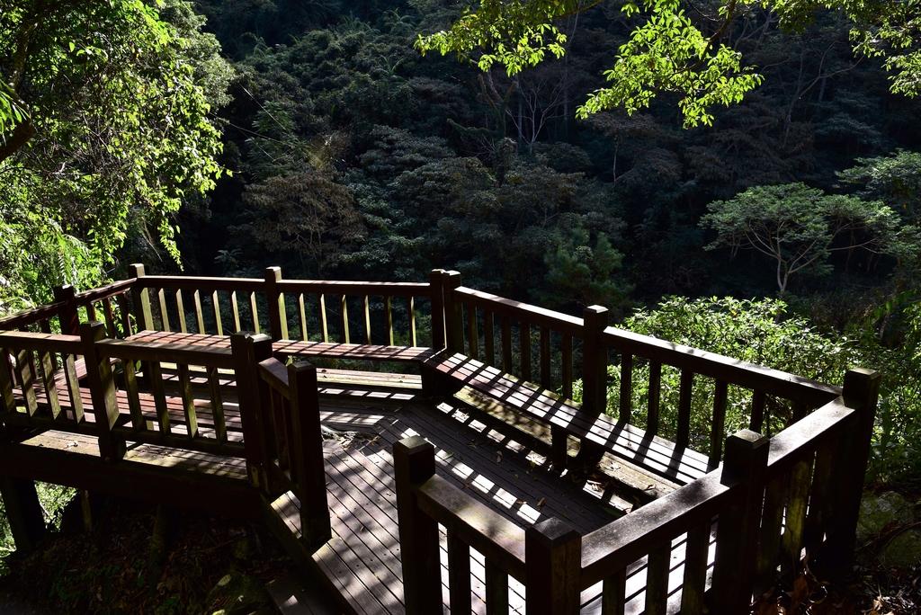 八仙山國家森林遊樂區 (22).JPG - 八仙山國家森林遊樂區