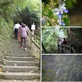 竹坑溪步道:相簿封面
