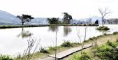 三芝秘境-水中央:_DSC0661.JPG