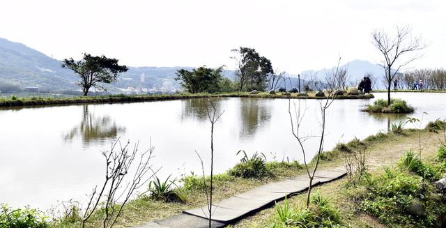 _DSC0661.JPG - 三芝秘境-水中央