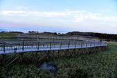 北海道-知床五湖:知床五湖 (21).JPG