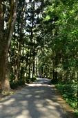 嘉義公園,射日塔:嘉義公園 (15).JPG