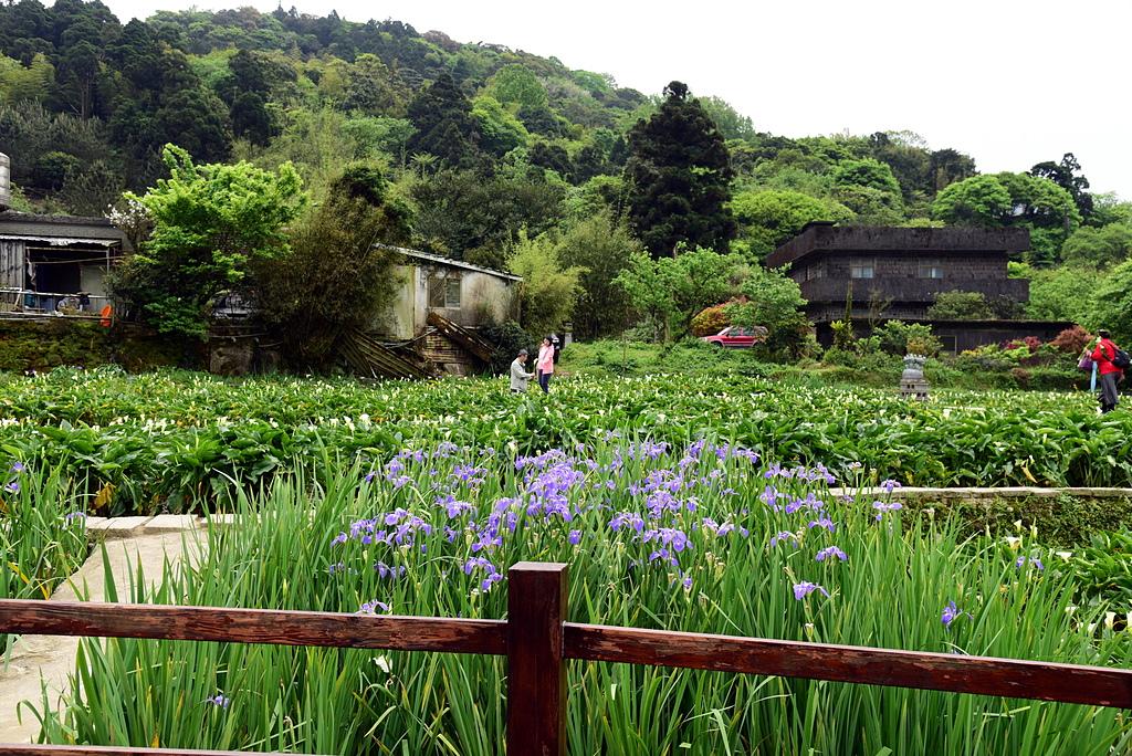 DSC_9886.JPG - 苗榜花園餐廳