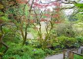 維多利亞布查花園:維多利亞布查花園_1000420_0510 924.jpg