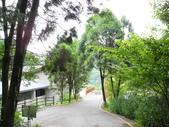 峇里森林溫泉渡假村:峇里森林溫泉渡假村 (4).jpg