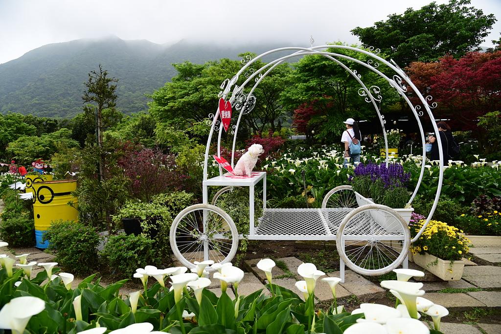 DSC_9956.JPG - 苗榜花園餐廳