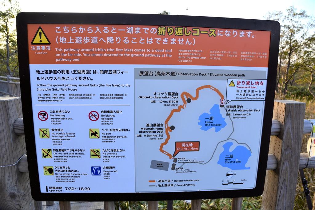 知床五湖 (9).JPG - 北海道-知床五湖