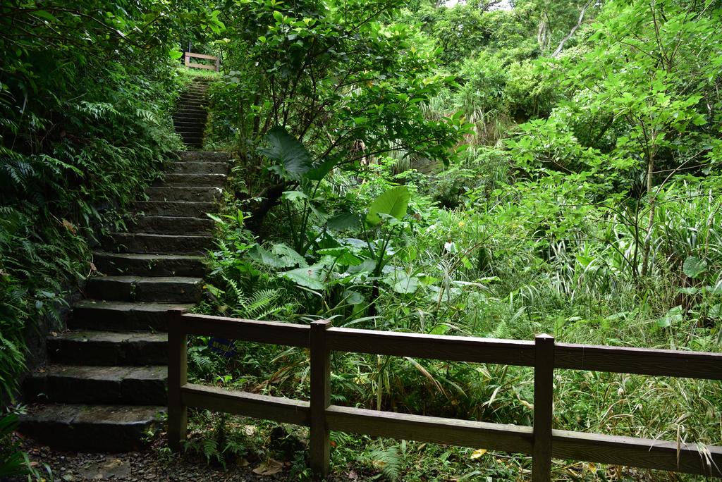 富陽自然生態公園 (18).jpg - 富陽自然生態公園