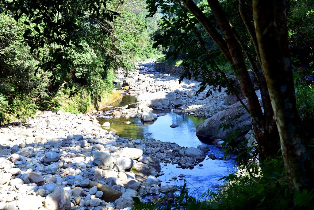 蓬萊溪護魚步道  (10).JPG - 蓬萊溪護魚步道