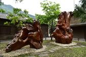 林田山林業文化園區,大農大富平地森林園區 :DSC_5156.JPG