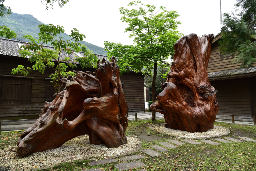 DSC_5156.JPG - 林田山林業文化園區,大農大富平地森林園區