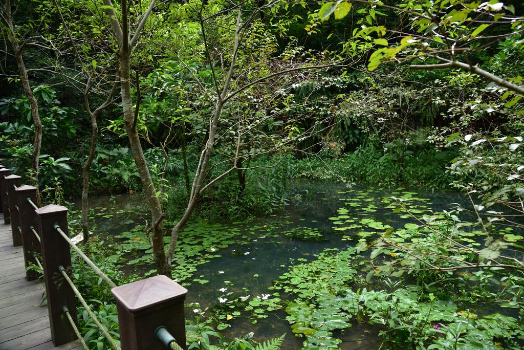 富陽自然生態公園 (22).jpg - 富陽自然生態公園