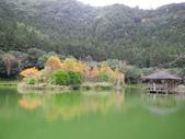 明池國家森林遊樂區:明池國家森林遊樂區 033.jpg